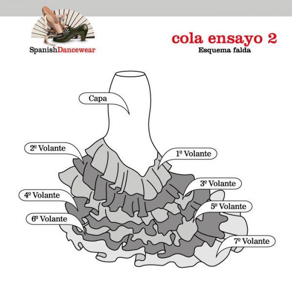 cola_ensayo2_esquema